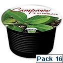 Campanini Te Nero Tea Capsules 16 per Box Ref 1198 [6 Boxes]