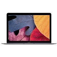Apple MacBook with Retina Display (12 inch) Notebook Core M (1.1GHz) 8GB 256GB Solid State Drive WLAN BT Webcam Mac OSX Yosemite (Intel HD Graphics 5300) Space Grey
