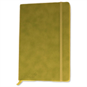 Silvine Executive Soft Feel A5 Notebook Ruled 160 Pages Lime Green