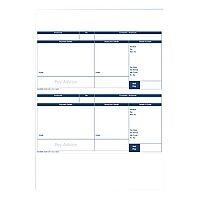 Pegasus Capital 1 Part A4 Pay Advice Pack Of 500 CL95  Blank Wage Slips