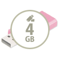 4GB USB Sticks
